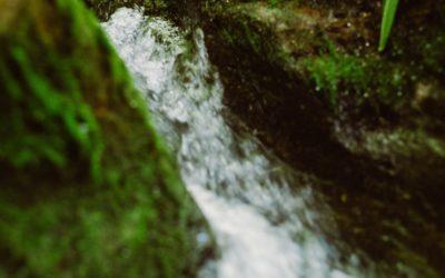 A River Runs Through Your Heart | VIDEO